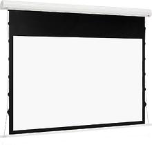 Euroscreen Sesame Electric HDTV (16:9) 220*155cm (VA210*118) TabT Flexwhite case white