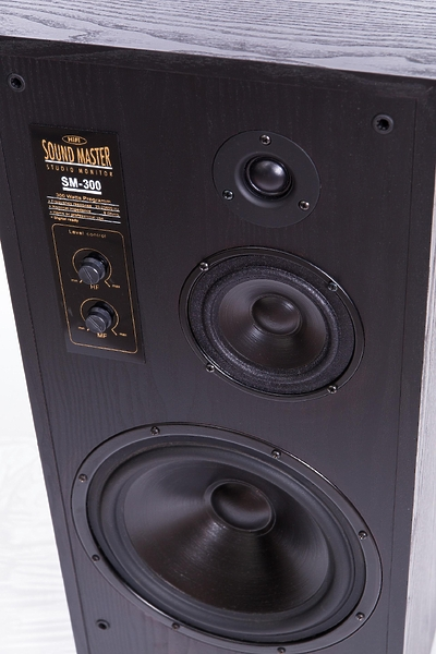 Radiotehnika SM-300 black #2 в «HiFiRussia»