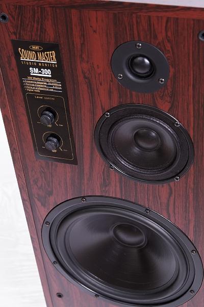 Radiotehnika SM-300 rosewood #2 в «HiFiRussia»