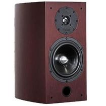 Advance Acoustic EL 170 Palisander