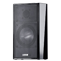 Canton CD 310 black high gloss (пара)