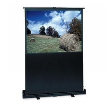 "Projecta LiteScreen 128x168см  (80"") Matte White High Gain"