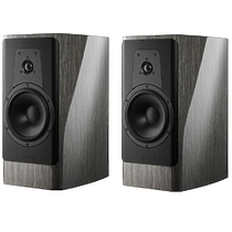 Dynaudio CONTOUR 20 grey oak high gloss