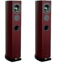 Advance Acoustic EL 250 Palisander